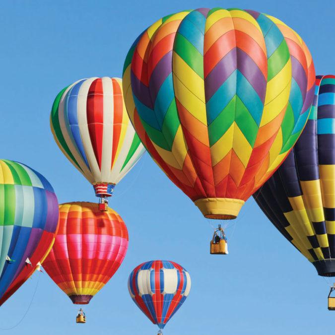 Hot Air Balloons at the Botanical Garden