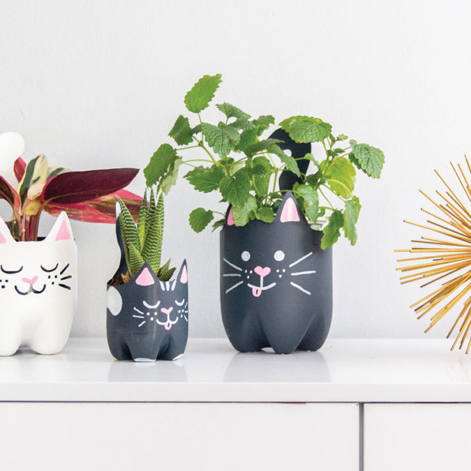 Soda bottle cat planter