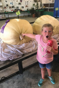 Girl is in shock at how large the pumpkin is